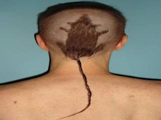 Model Rambut Pria Tahun 2015