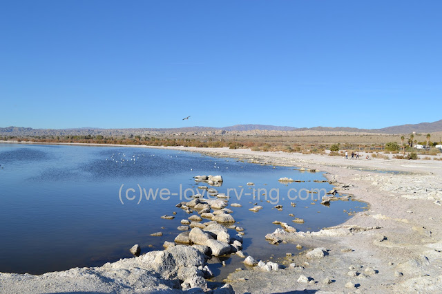 A view of the Salton Sea with the rocky shoreline