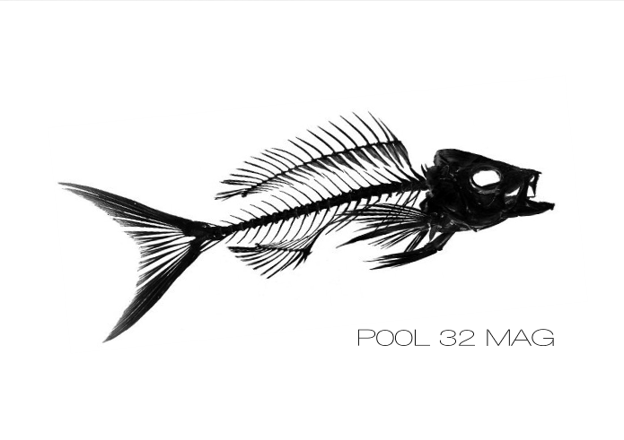 Direct link to latest edition of Pool 32 Mag - click on this image