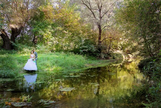 свадебные фотографы Чернигова