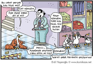 Hayvan Karikatürleri