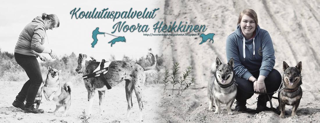 Koulutuspalvelut Noora Heikkinen
