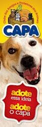 CAPA - Protetores dos Animais
