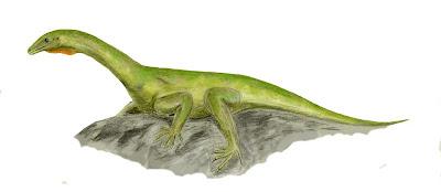 reptiles del permico Protorosaurus