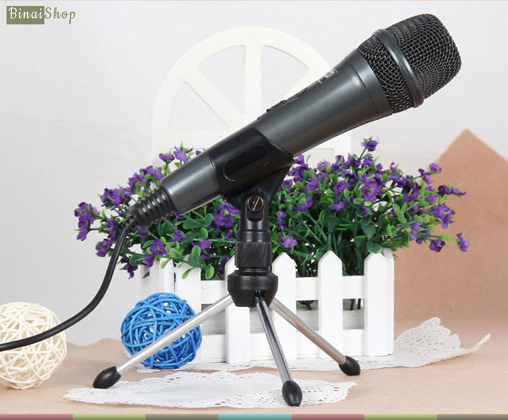 Microphone Salar M19