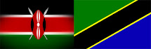 Kenyan and Tanzanian Flags