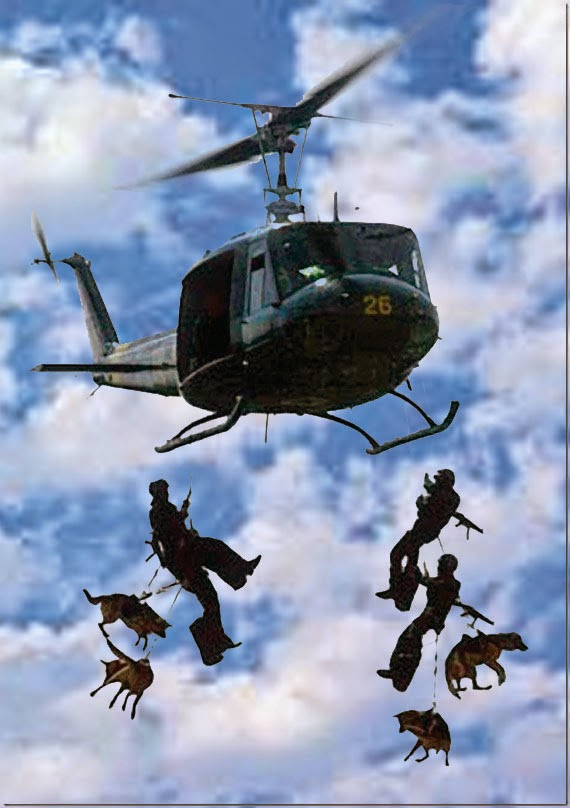 Navy SEALs Rappelling with Canines