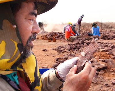 Fukui museum unearths Japan's dinosaur roots