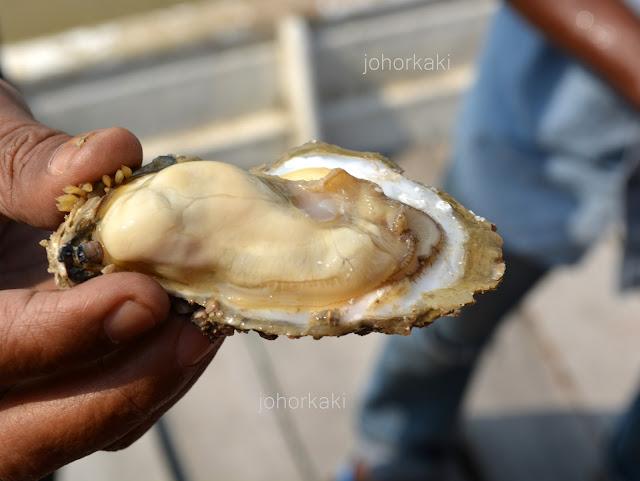 Oyster-Muar-Johor