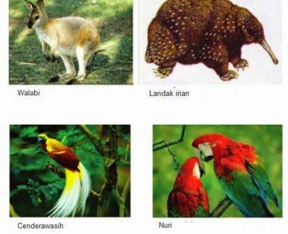 Beberapa spesies fauna Indonesia bagian Timur.