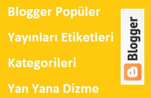 Blogger Popüler Yayınları Etiketleri Kategorileri Yan Yana Dizme