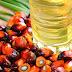 HARGA CPO 13 JANUARI: Minyak Sawit Akhirnya Menguat, Pasar Mulai Respons Kondisi Stok