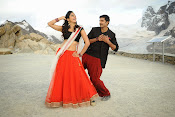 Loukyam Movie photos gallery-thumbnail-3