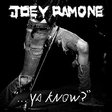 joey: new album