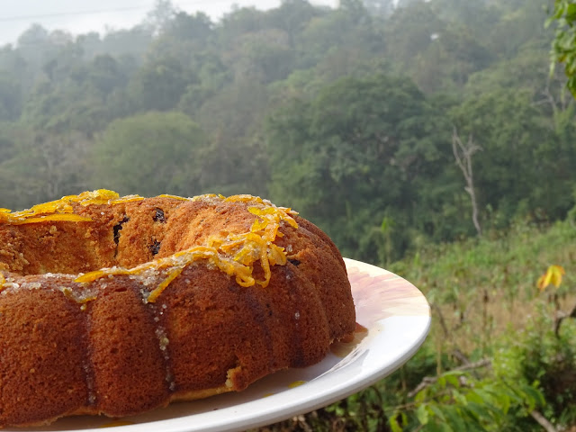 Orange cake with raisins and cranberries