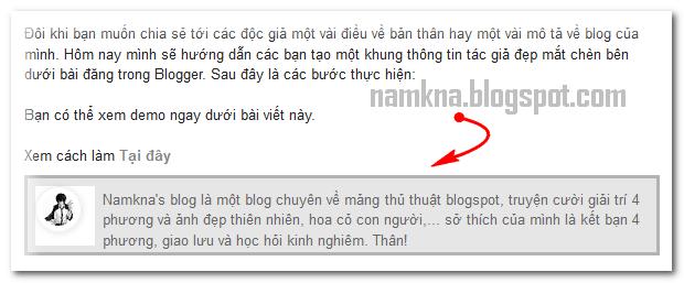 Author box đơn giản chèn bên dưới bài đăng
