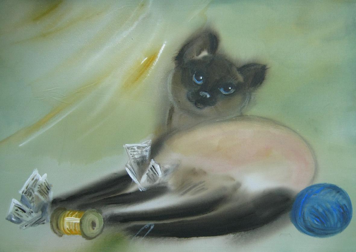 Задача кот