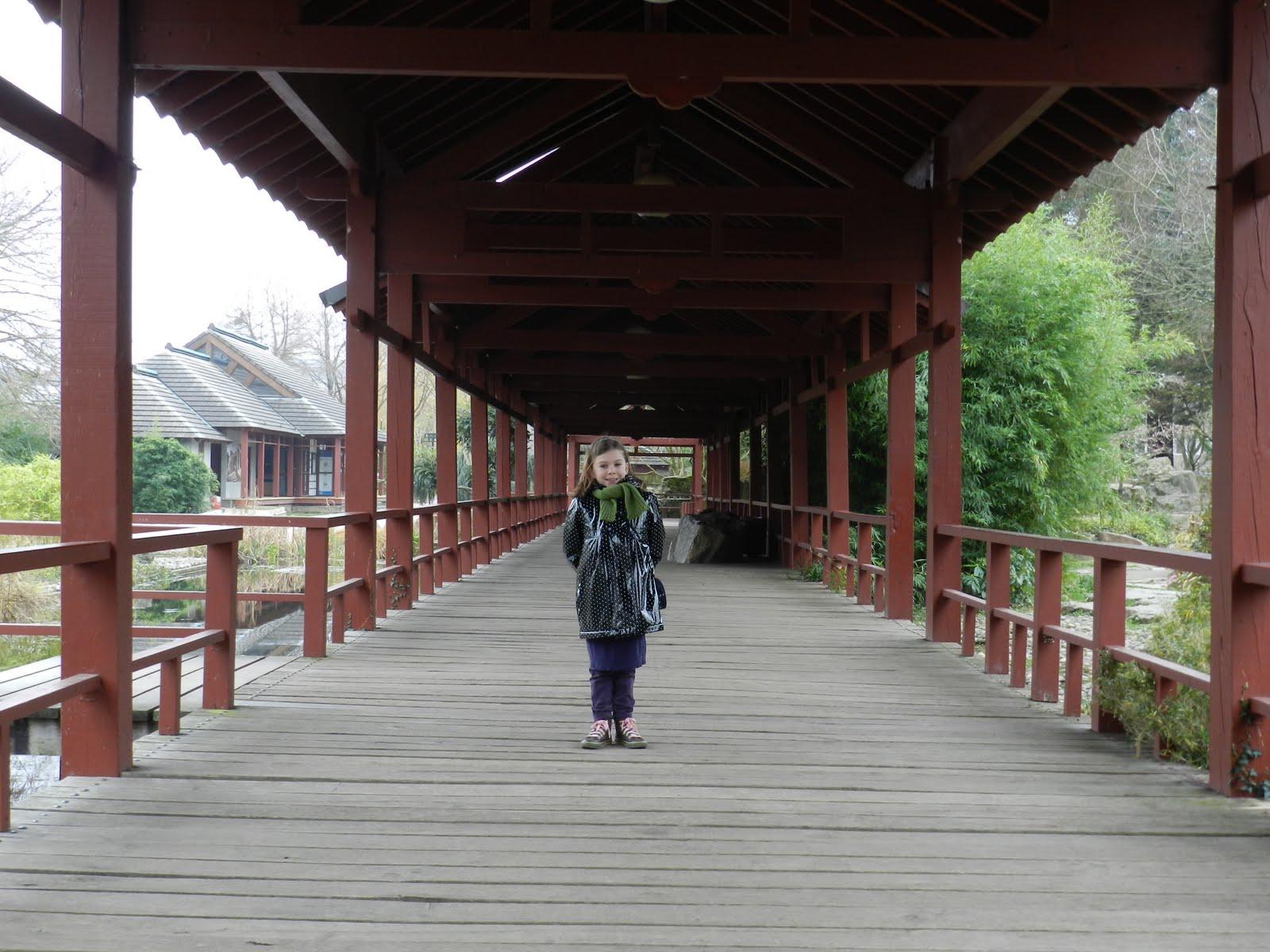 La pierre et la plume jardin japonais de la ville de nantes for Jardin japonais nantes