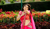 Rosy and sparkling Bhumika chawla hot in saree