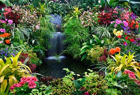 Beautiful garden flowers designs for Beautiful flower garden designs