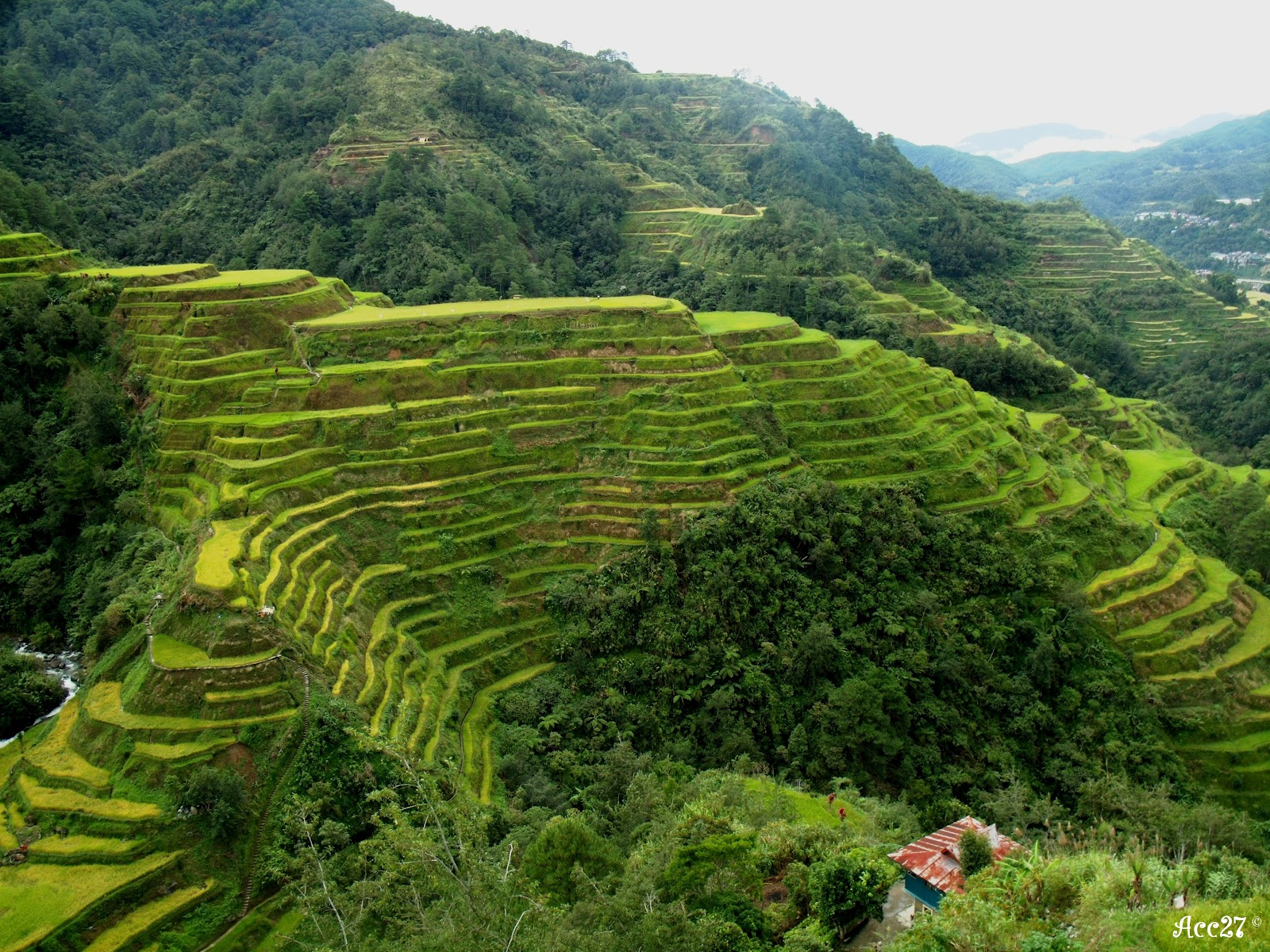 Our wanderful journey sagada banaue adventure part iv for What are terraces