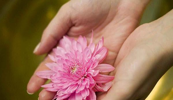 Cuerpo, mente y alma - Terapia Floral y Qigong para la Salud
