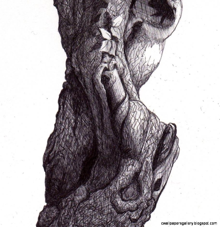 Reproduction of a Pen Drawing of an Apple Tree Trunk by Parrish