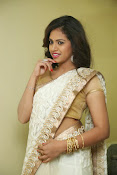 gowthami chowdary glamorous in saree-thumbnail-14