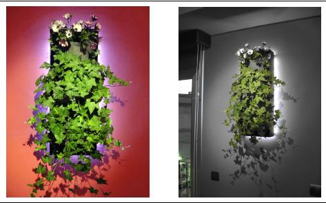 Vertiflor jardineras verticales listas para colgar for Jardineras iluminadas