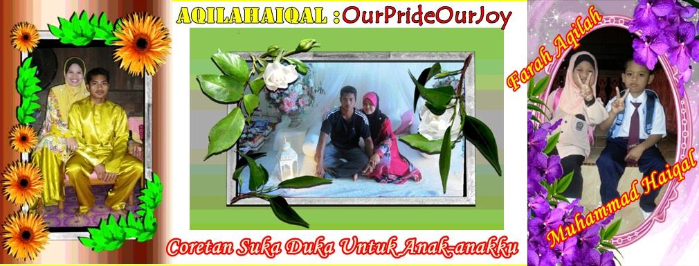AQILAHAIQAL : OurPrideOurJoy