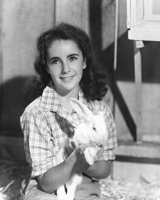 Young Debbie Reynolds And Elizabeth Taylor The life of an obsessi...