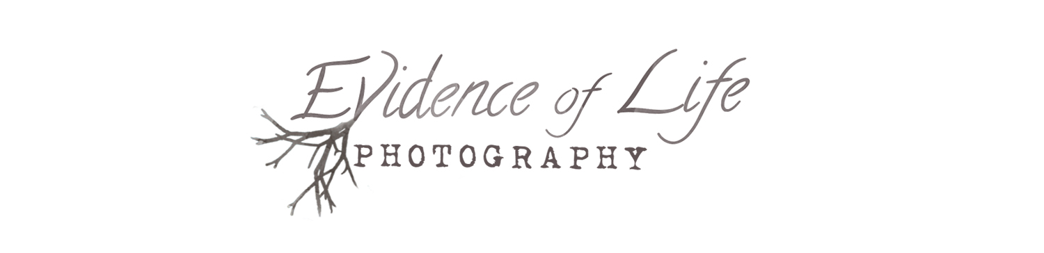 evidence of life photography
