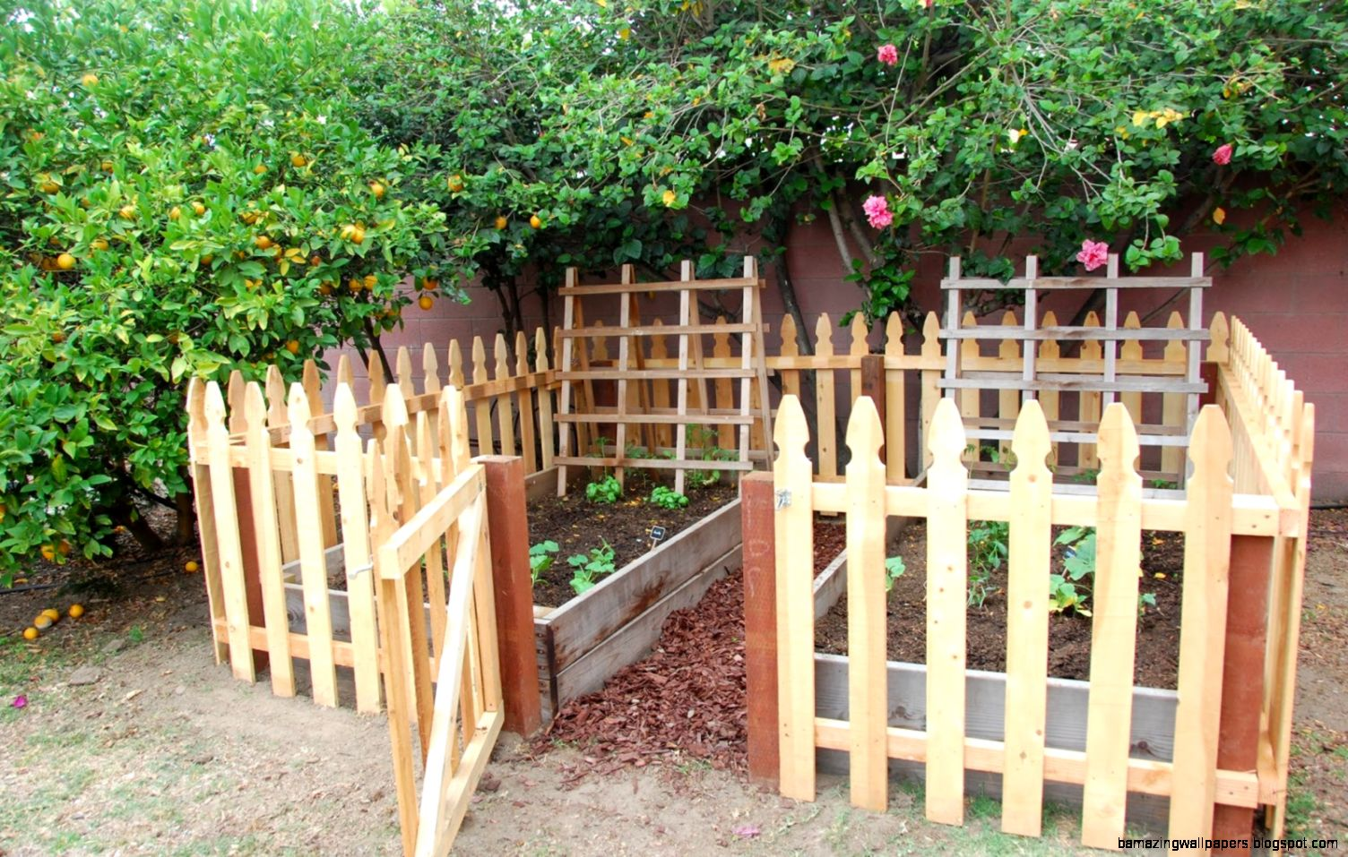 Inspiring Fence Around Garden 10 Raised Vegetable Garden With