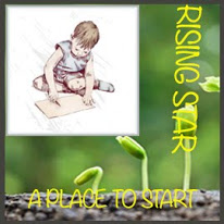 Won Rising Star for A Place To Start Challenge Blog