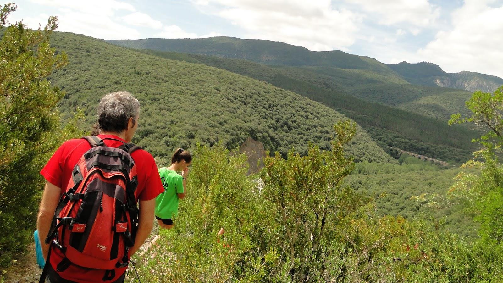 El Sue O De La Ruta Del Lobo Bosque De Zu Iga Valle Del