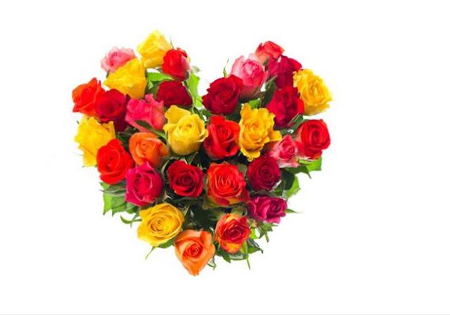 دلالات الورود بالألوان!