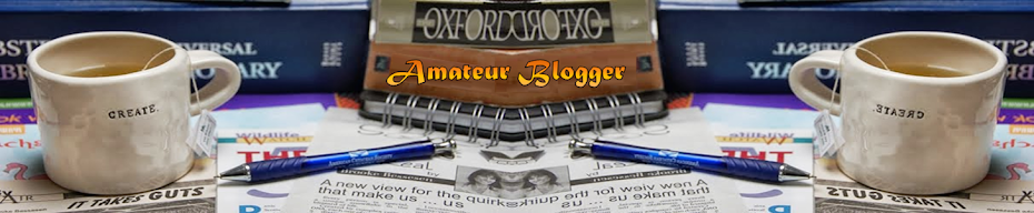 Amateur Blogger !!!
