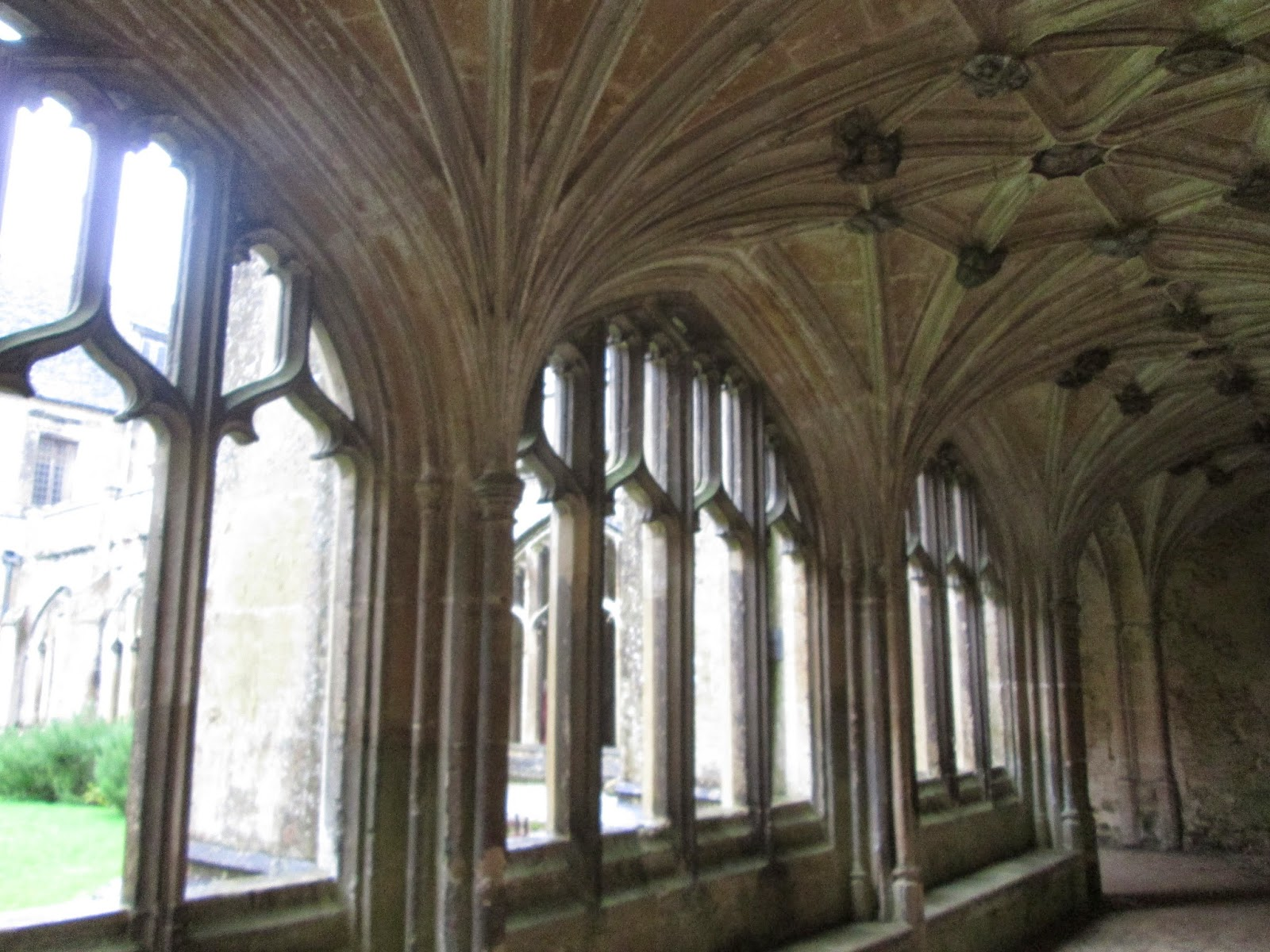 Most Inspiring Wallpaper Harry Potter Dining Hall - IMG_7395  Best Photo Reference_19249.JPG