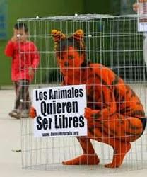 Los animales quieren ser libres