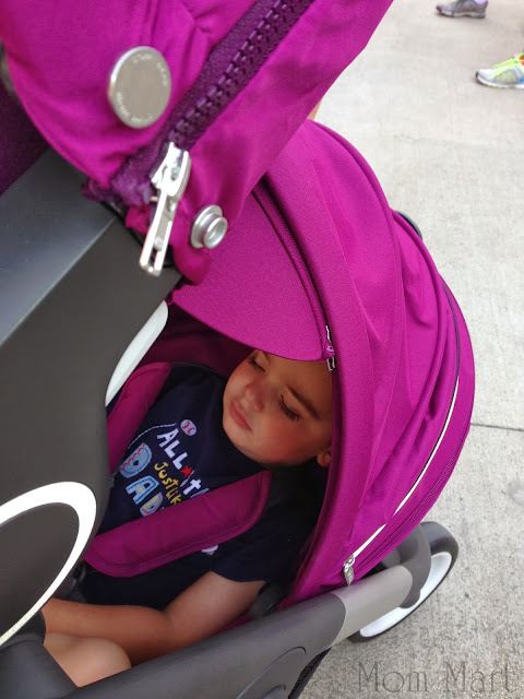 Walk to End Alzheimer's with our Stokke Crusi and a sleepy little boy.