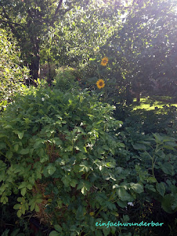 Garten - Nutzen - Atmen