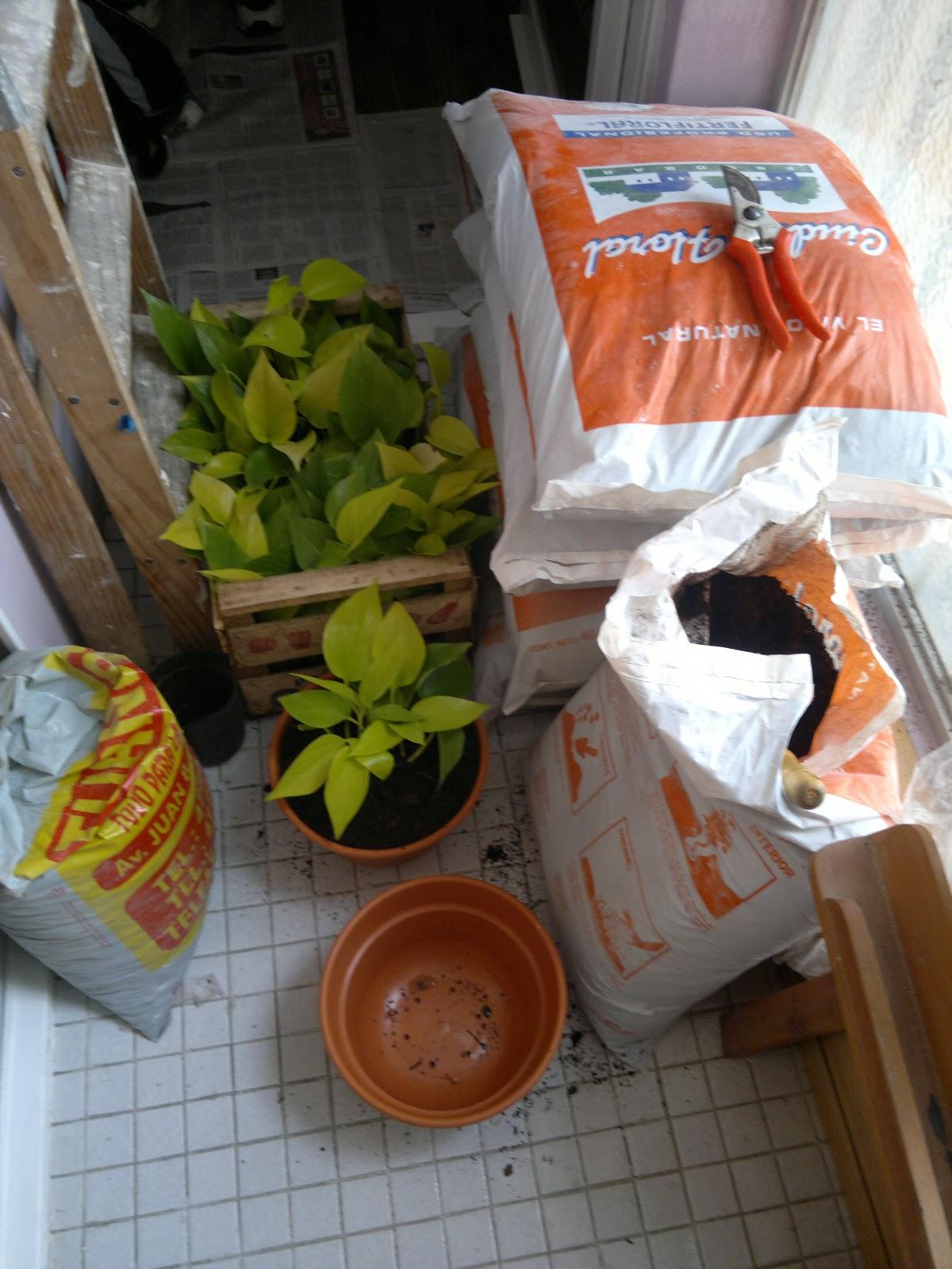 T cnico en jardiner a dise o en balc n interior for Tecnico en jardineria