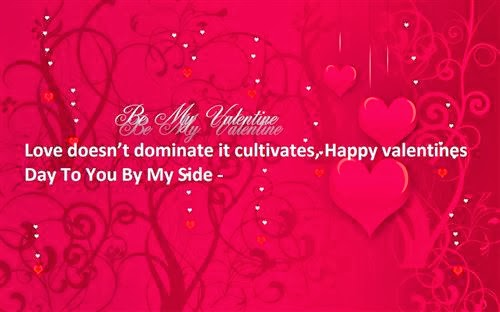 Interesting Valentine's Day 2014 Quotes For Friends and Family