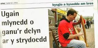 Bysgiwr Gwadd / Featured Busker