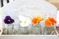 Salt Shakers to Vases
