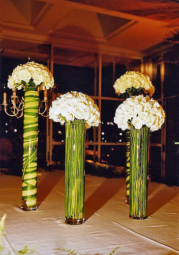 Tall Skinny Vases
