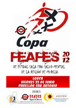 CARTEL DE LA COPA 2012