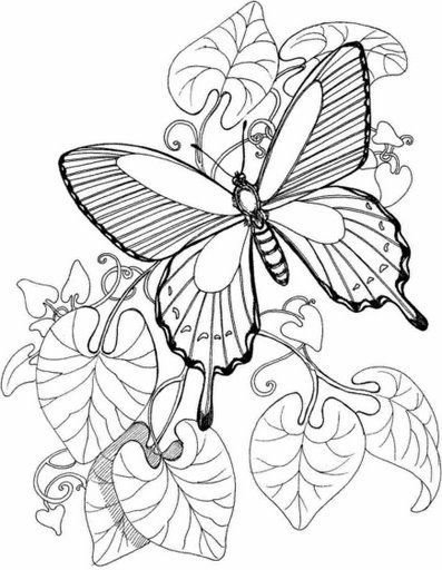 Dibujos y plantillas para imprimir mariposas y flores - Plantillas de mariposas para pintar ...