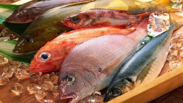 C mo prevenir la contaminaci n por par sitos en alimentos seipro - Alimentos para ir al bano inmediatamente ...