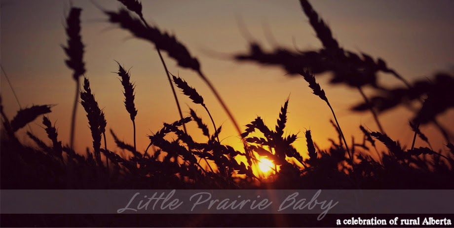 Little Prairie Baby